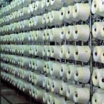 Bobbins of linen yarn ready for warping